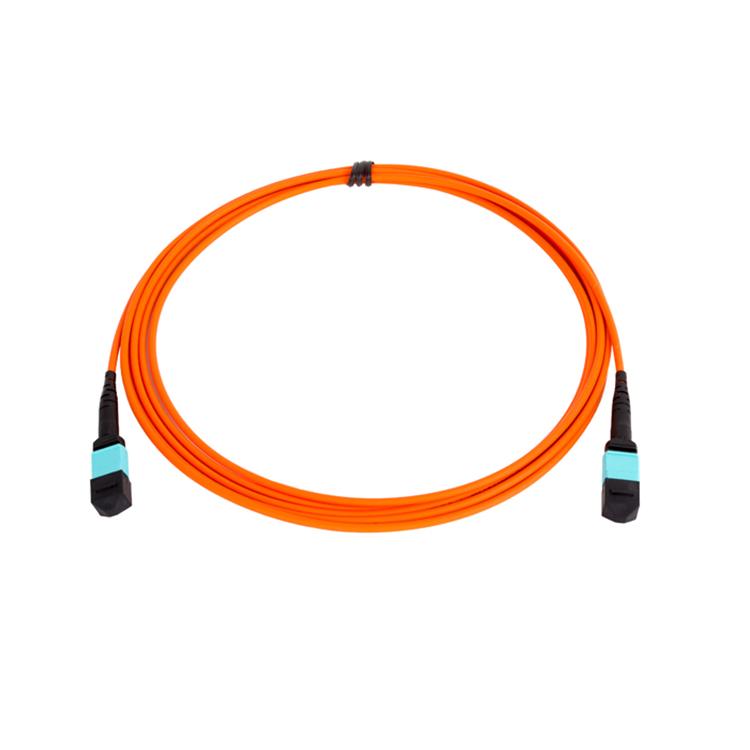 SM,Patch cord,MPO(MTP) male/ female , G652D,G657A1, G657A2, G657B3, OM1 ,OM2, OM3,OM4,OM5 . 2~144CORE