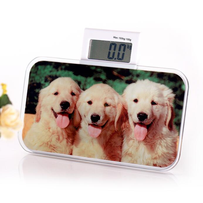 Photo Frame For Sublimation With Scale